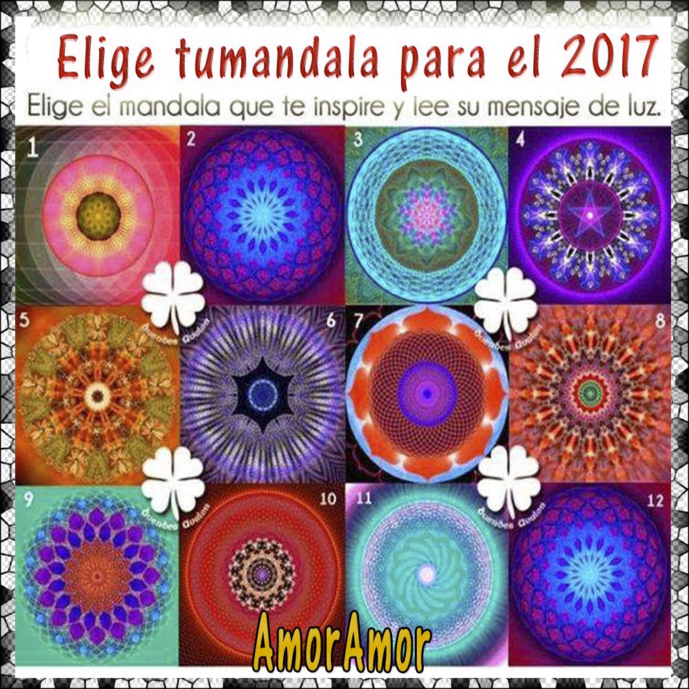 elige2017