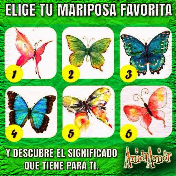 elegitu mariposa