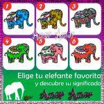 Test del elefante
