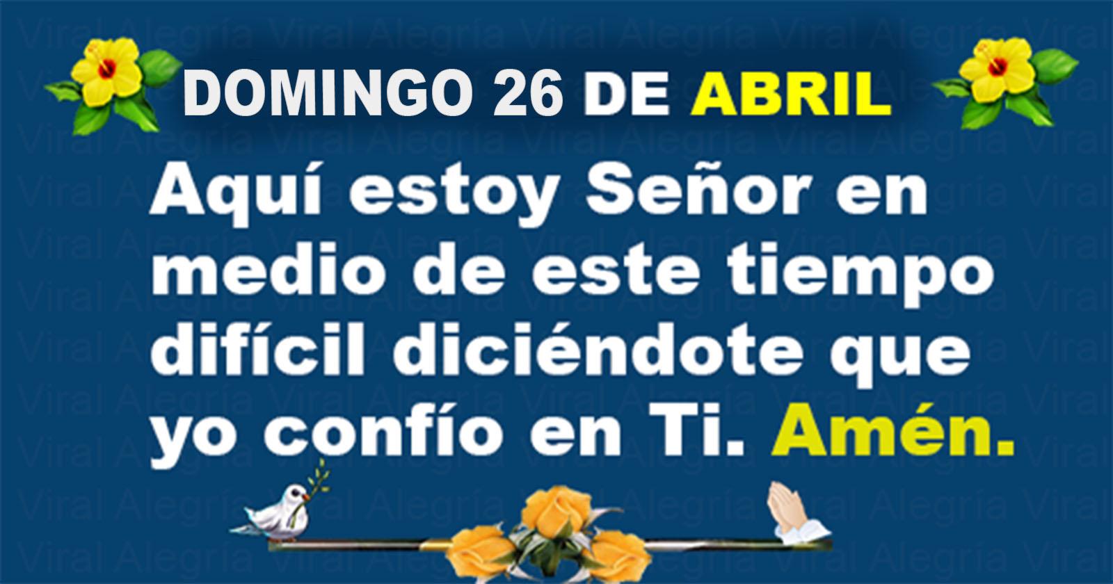 DOMINGO 26