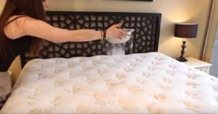 sodio-cama