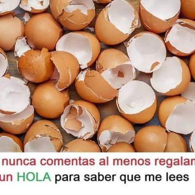 NUNCA MÁS VOLVERÁS A TIRAR LA CÁSCARA DEL HUEVO CUANDO VEAS SUS BENEFICIOS..