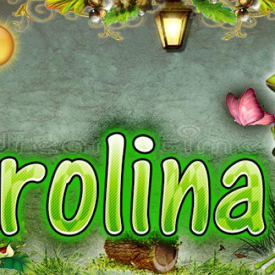 Portadas para tu Facebook de la Rana con tu nombre,Carolina