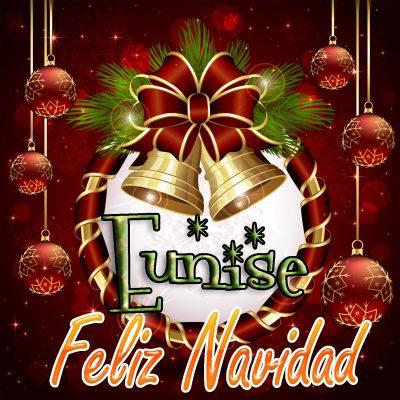 Feliz Navidad !!! Eunise