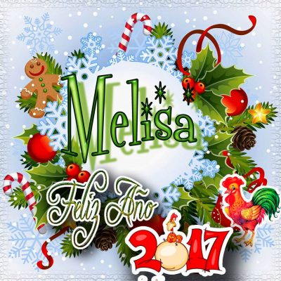 Lindas tarjetas para perfil con tu nombre 2017!!! Melisa