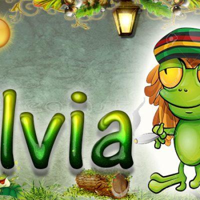 Portadas para tu Facebook de la Rana con tu nombre,Silvia