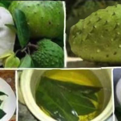 Guanábana, propiedades (reales) de esta fruta tropical