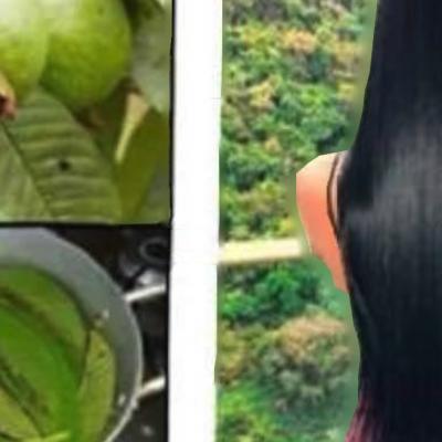 Aplícate el AGUA DE LA HOJA DE GUAYABA que te dejará el cabello muy sedoso, brillante.