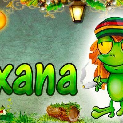 Portadas para tu Facebook de la Rana con tu nombre,Roxana