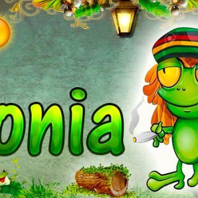 Portadas para tu Facebook de la Rana con tu nombre,Sonia