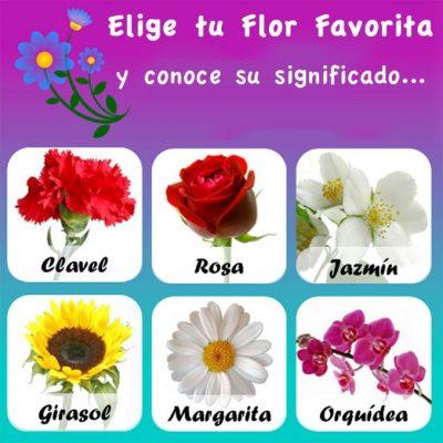 Test de las Flores