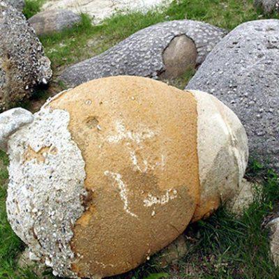 Respiran, crecen y se reproducen: el extraño fenómeno de las piedras vivas de Rumania