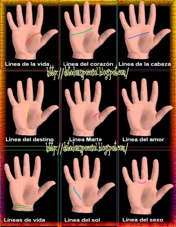 El significado de las líneas de las manos y cómo leerlas: amor, sexo, destino…