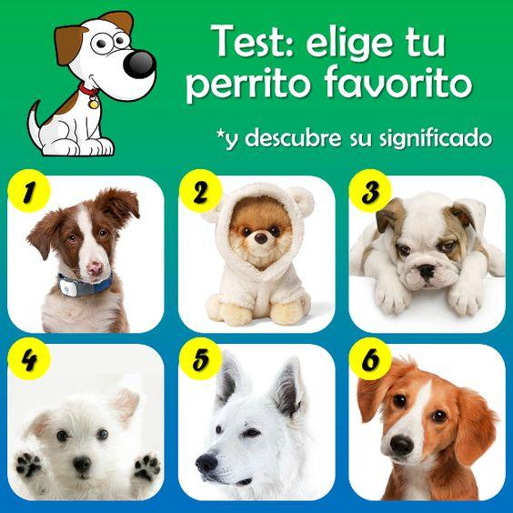 El test de los perritos.